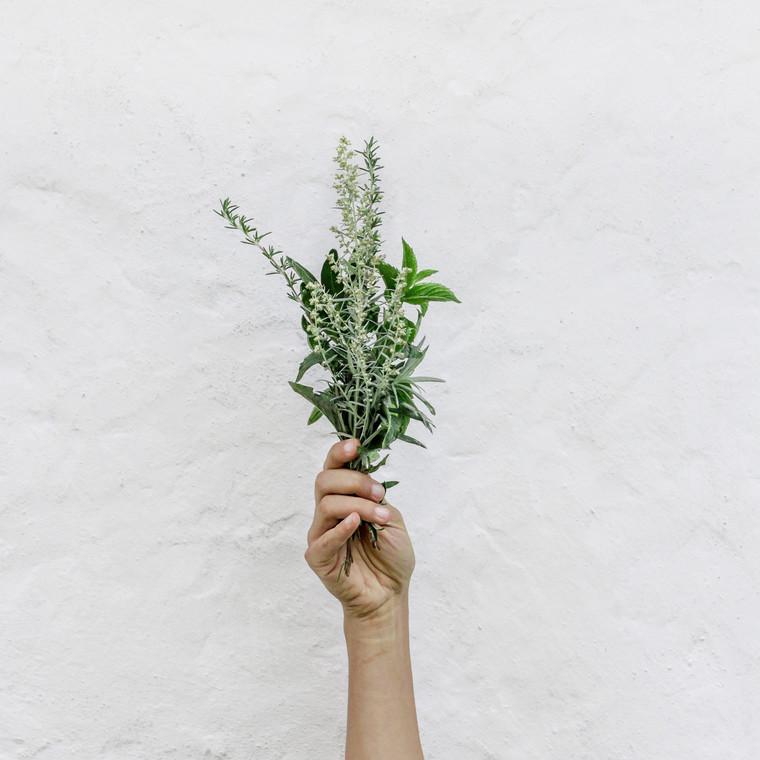 Το βότανο που καταπολεμά τις εξάψεις της εμμηνόπαυσης