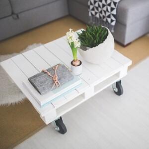 Πώς θα καθαρίσεις την ατμόσφαιρα μέσα στο σπίτι σου με φυσικό τρόπο