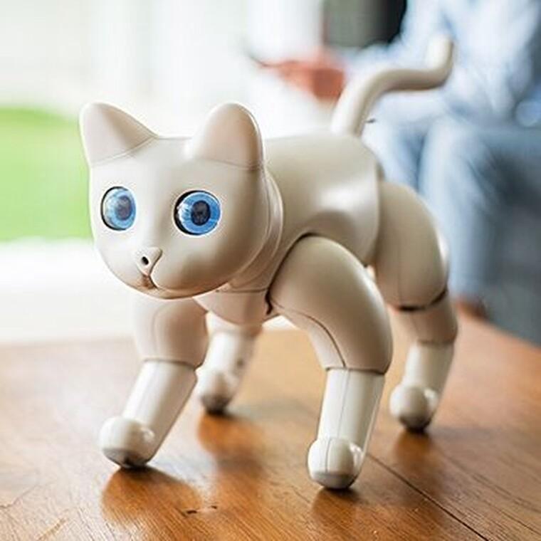 H πρώτη βιονική γατούλα που θα σου κλέψει την καρδιά
