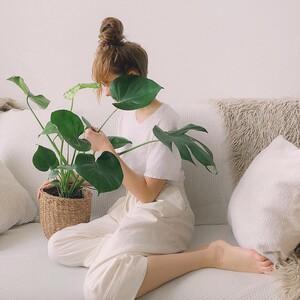 4 σημάδια που δείχνουν πως τα φυτά σου χρειάζονται οπωσδήποτε φροντίδα για ν΄αναγεννηθούν