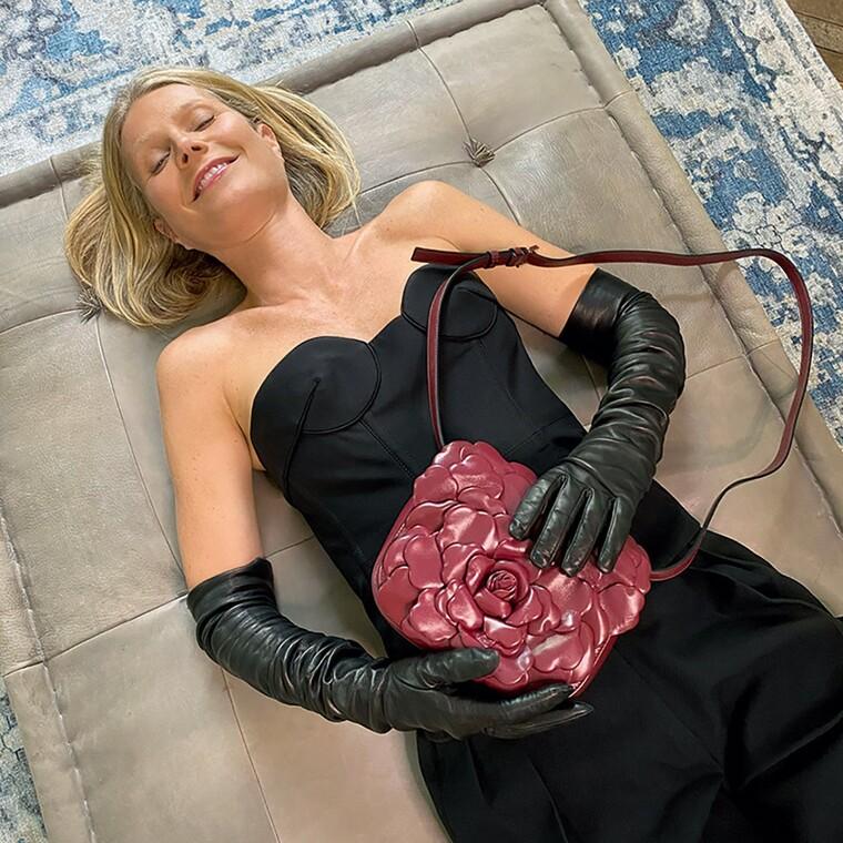 Gwyneth Paltrow, Laura Dern,Naomi Campbell και άλλοι stars ποζάρουν για τον Valentino