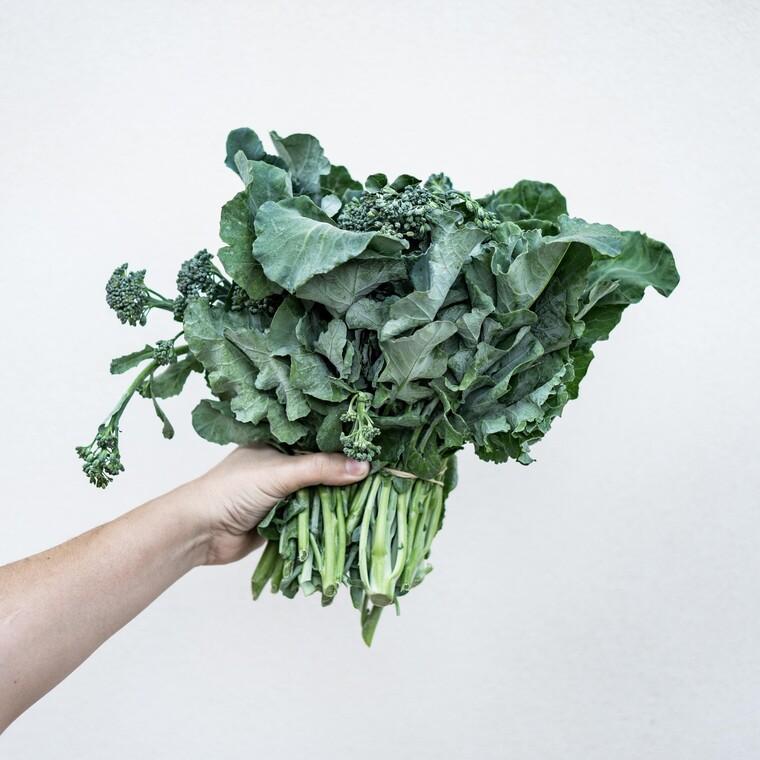 Αυτό είναι το φυτό με τα περισσότερα θρεπτικά συστατικά